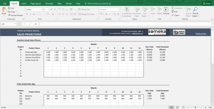 Trade Business Model - Feasibility Study Template in Excel - Template Screenshot Image 4 - Someka