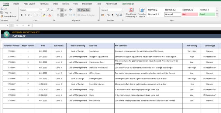 Internal-Audit-Excel-Template-Someka-SS3