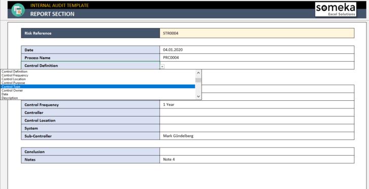 Internal-Audit-Excel-Template-Someka-SS9