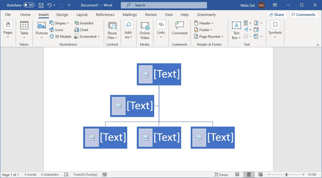 create-family-chart-in-microsoft-word